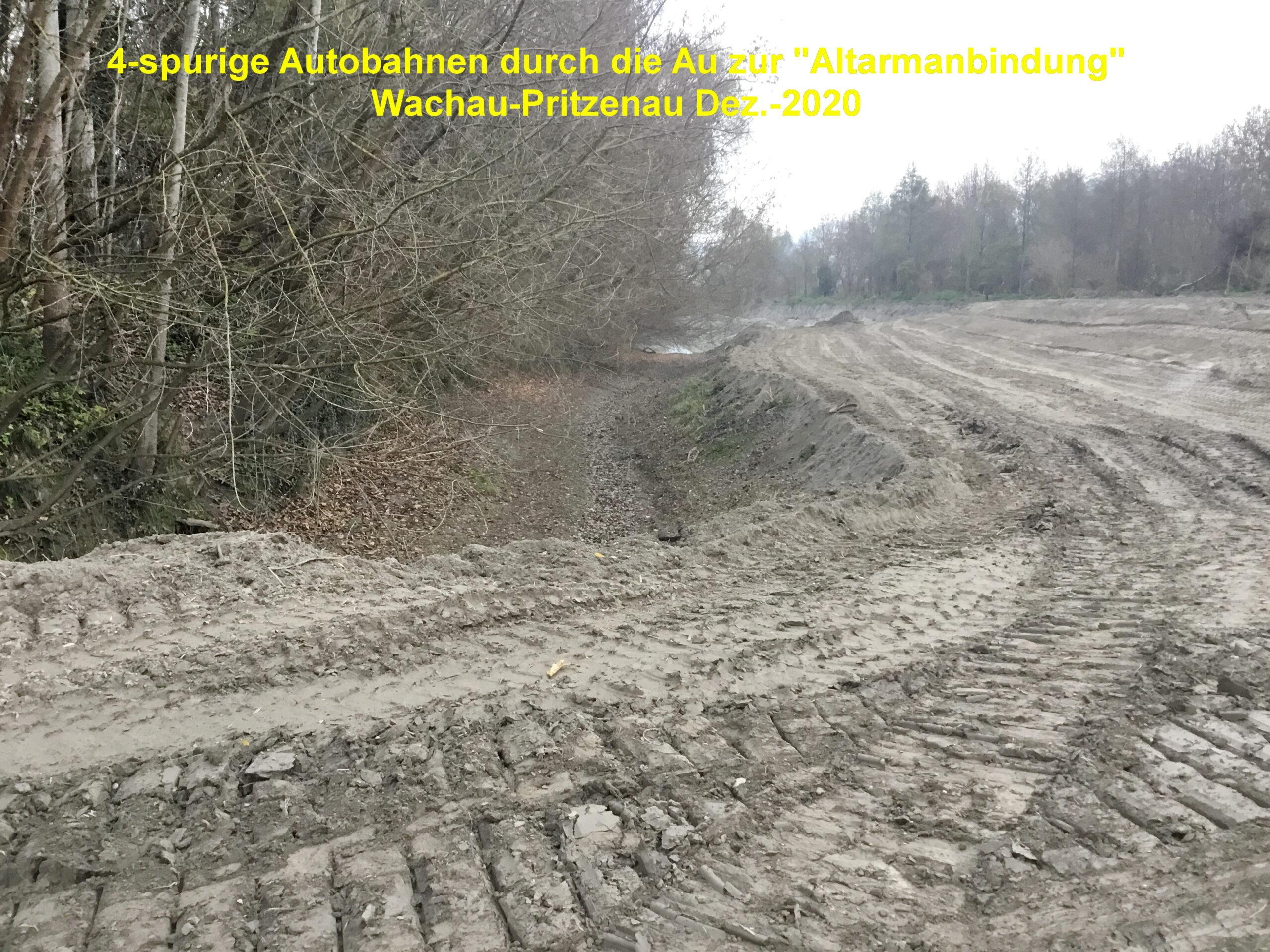 """Klimaschutzministerin Gewessler stellt klar: """"Ja zu Schutz unserer Natur und Biodiversität, Nein zum Donau-Oder-Kanal"""""""