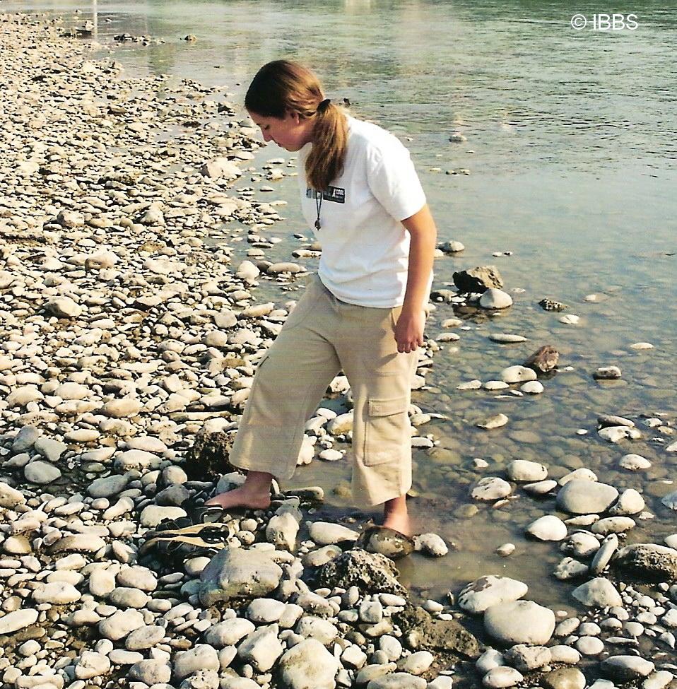 Lernen vom Fluss